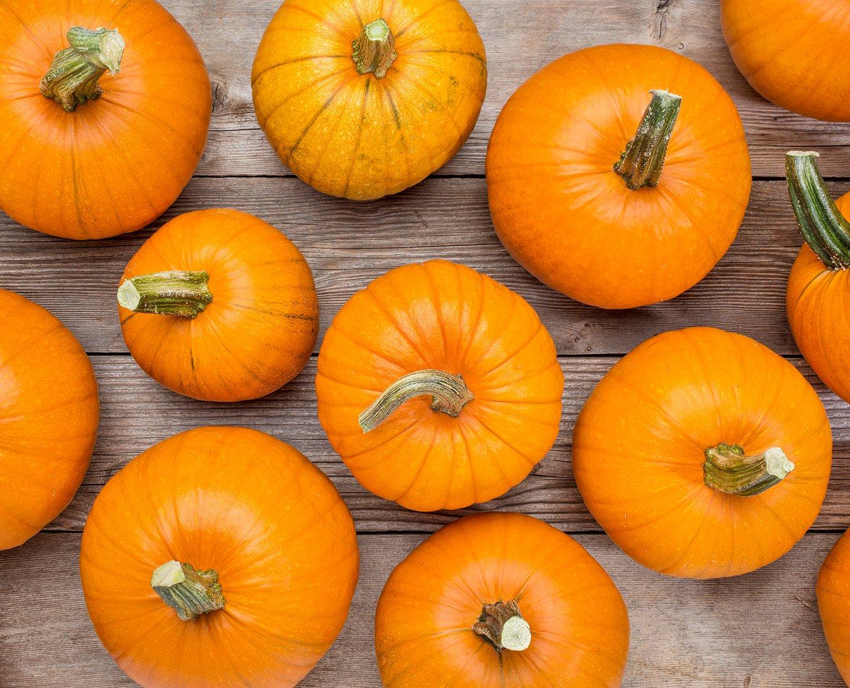 Pressure Canned Pumpkin or Winter Squash